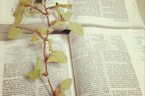 The Most Important Lesson I Learned About Serving in The Church