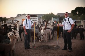 What Every Mormon Missionary Should Learn About True Leadership